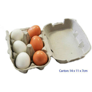WOODEN EGGS IN CARTON