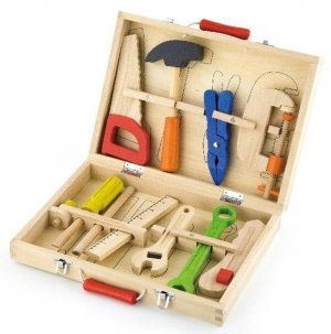 Tool kit in a case